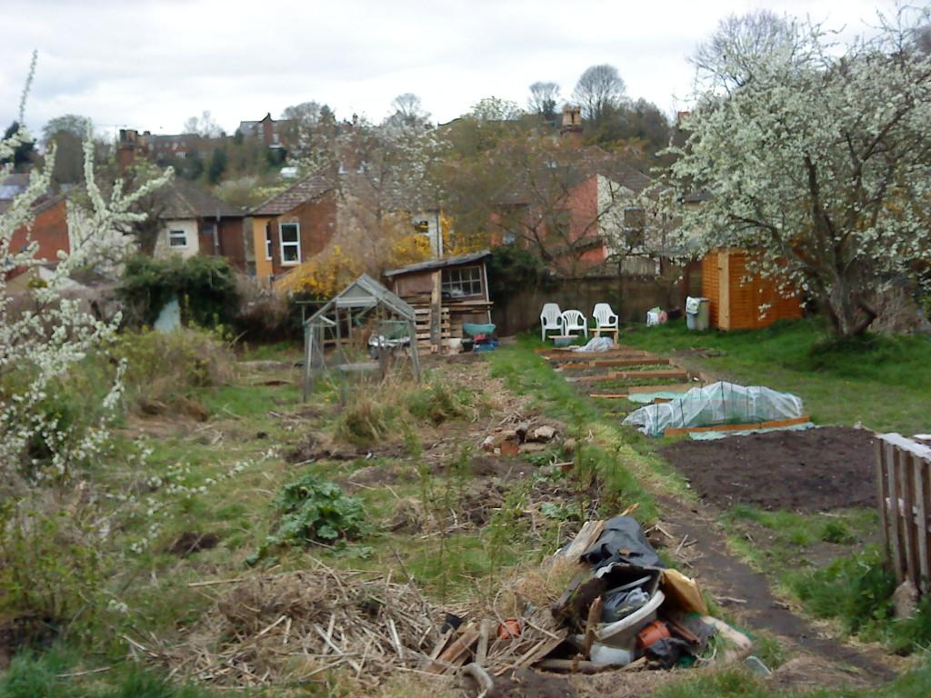 Grădina, cum am luat-o
