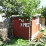 the spud